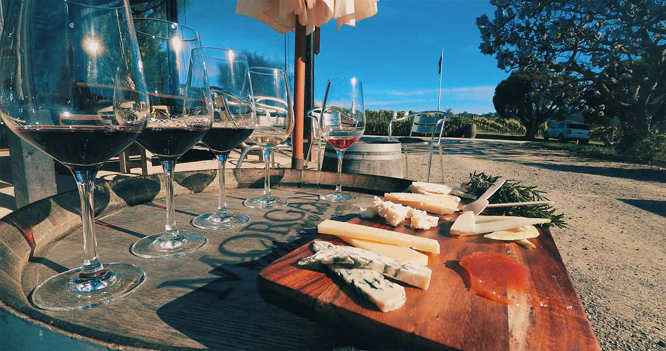 Wine and Cheese Tasting Yarra Valley